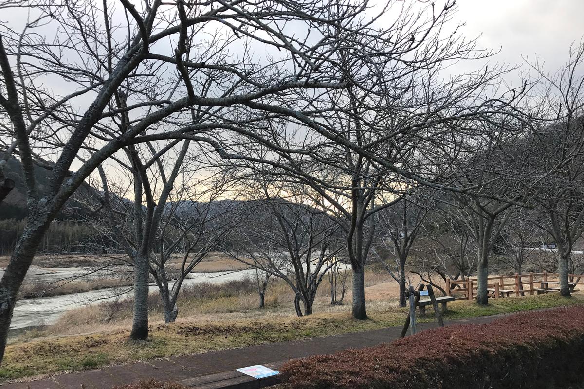 南山城村冬景色